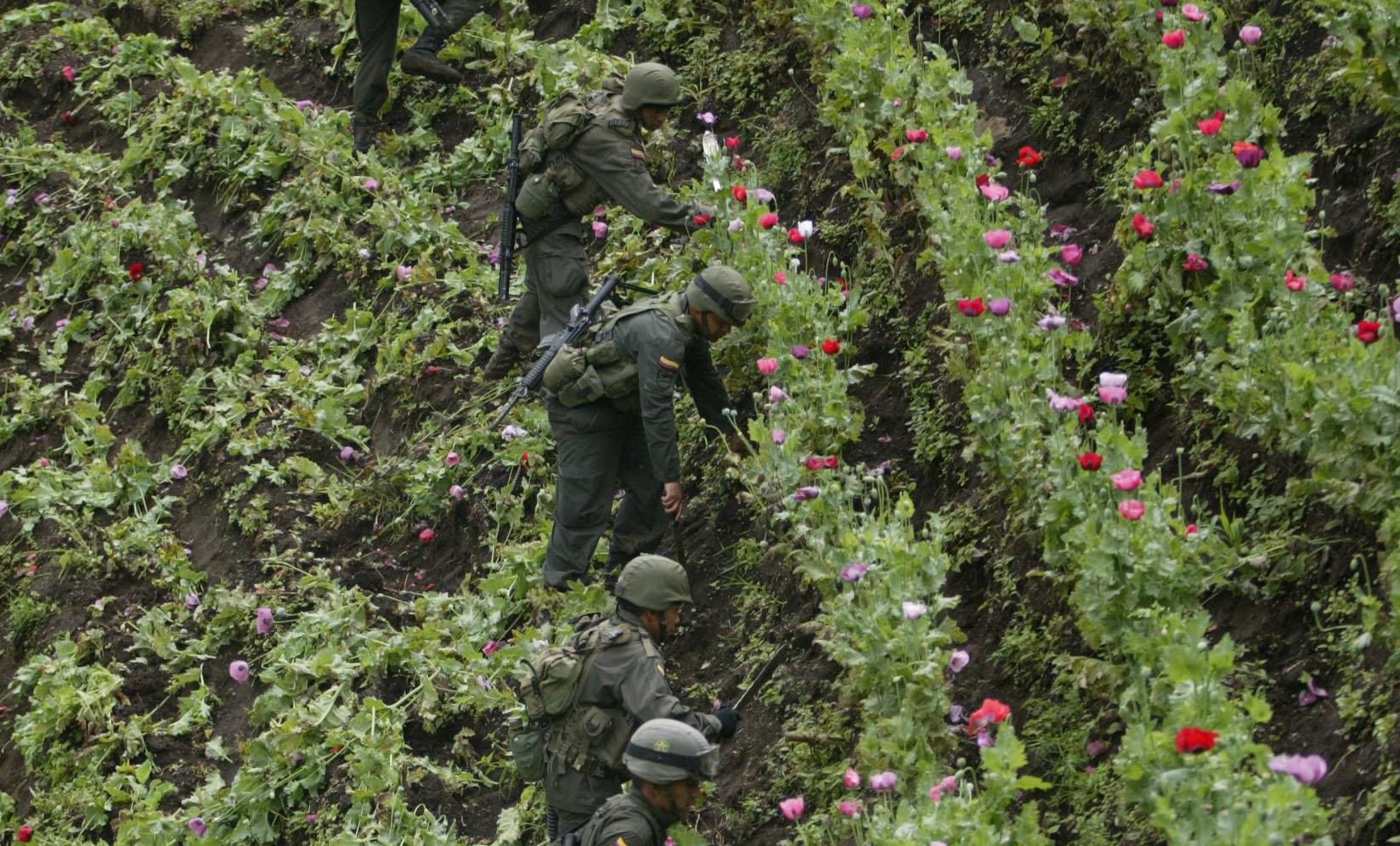 Drogas y Maduro centran cita Trump-Duque