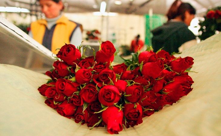 Avianca transportó 11.688 toneladas de flores