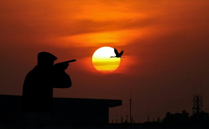 ¿Sí o no al regreso de la caza en Colombia?