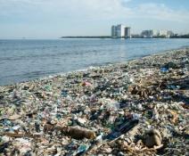 Cero plásticos en el mar: Coca Cola se une a la lucha